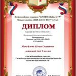 Михайлова Ю.С. (Copy)