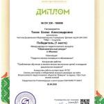 Тилик Е.А.  (Copy)